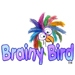 Brainy Bird Toys